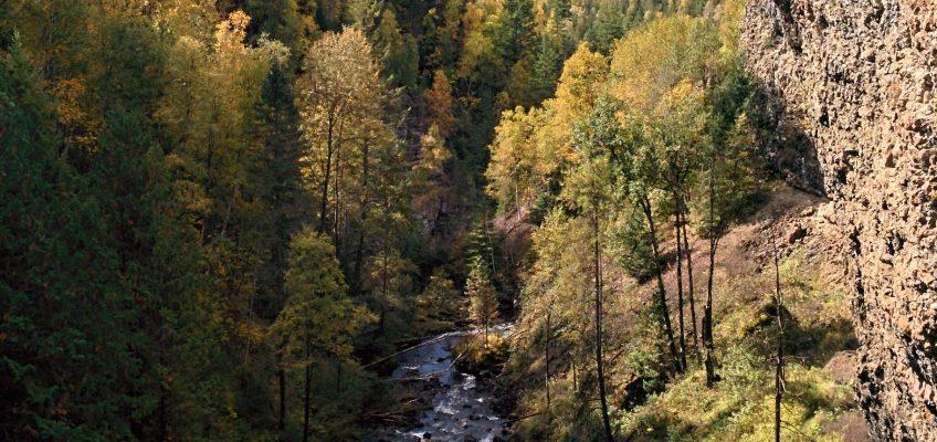 Wells Gray Provincial Park - Aussicht am Moul Falls