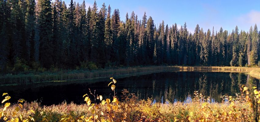 Wells Gray Park Provincial - Alice Lake