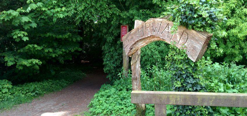 Neuenburger Urwald - Eingang
